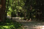 Driveway Gates & Grates in CT